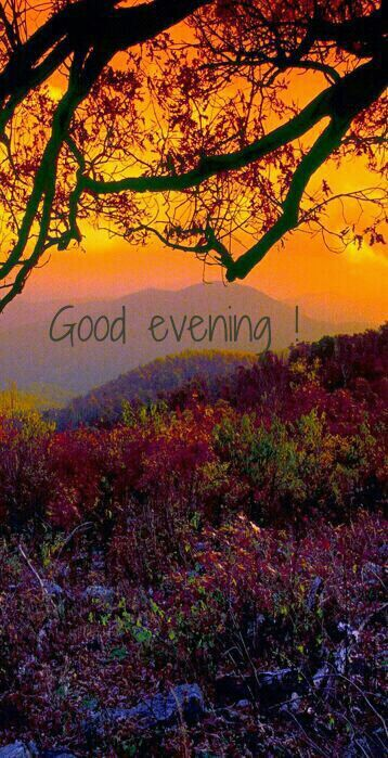 Have a good evening! Quotes | Graphics | Photo Art | Tumblr