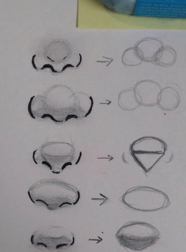 Verschiedene Nasenformen. Halb realistisch