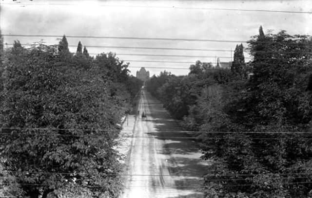 University Ave, Toronto looking north 1896