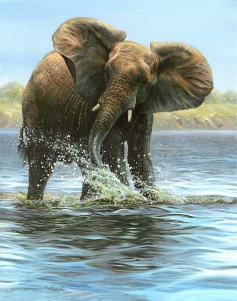 Joni Johnson Godsy Wildlife Art
