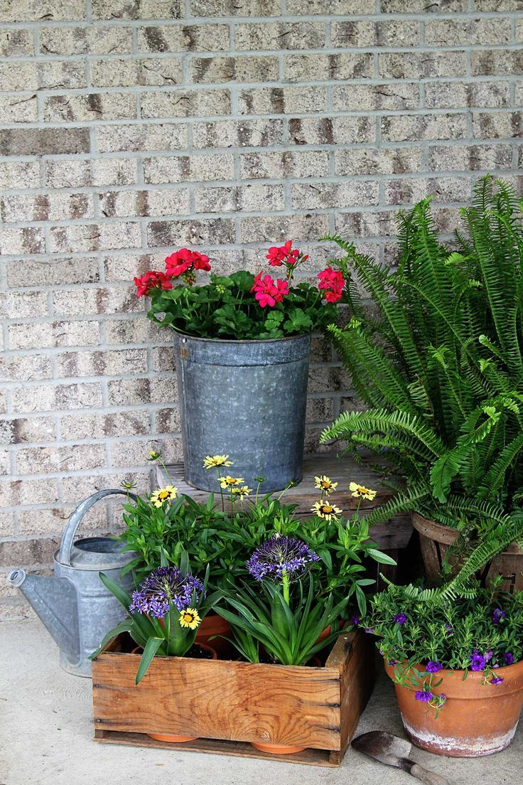 1201 best GARDEN Containers images on Pinterest Gardening