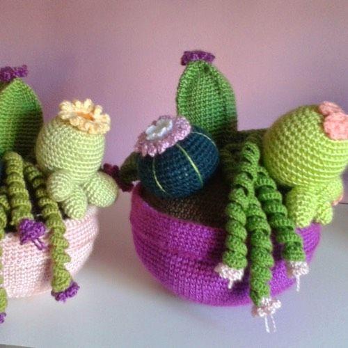 Patrón Cactus de Primavera