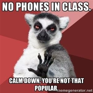 No phones in class.  Calm down, you're not that popular.  | Chill Out Lemur