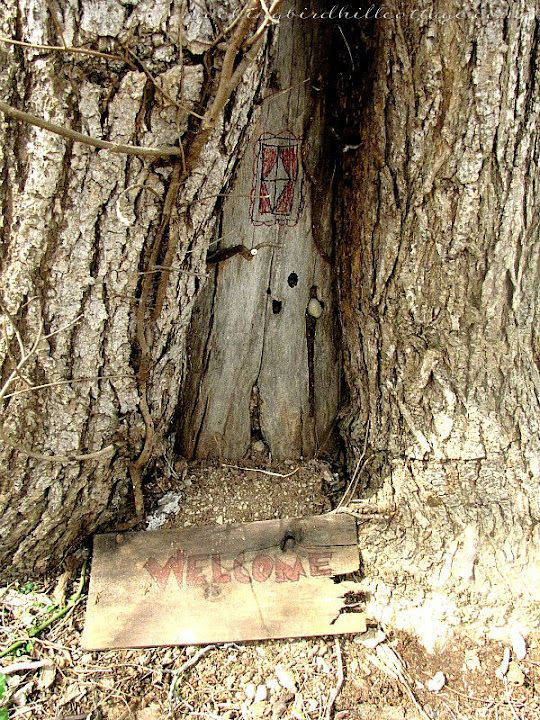 From one of my favorite blogs, Fairies in the Tree post