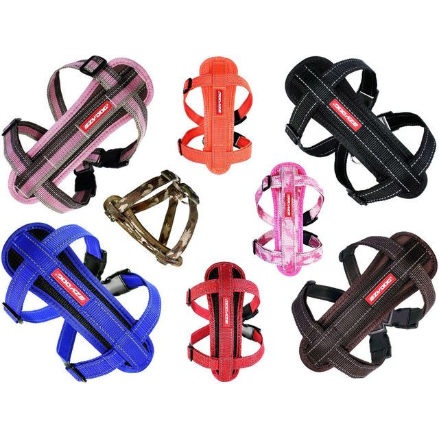 EzyDog Harness Chest Plate - ergonomic harness. Good for dogs who suffer chest, back or neck pains.
