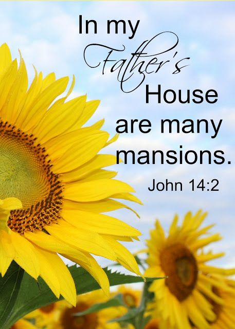 Life -- God created us to enjoy life until our last breathe. But He gives hope for what comes lest -- Heaven, our Heavenly Father's house where there are mansions and streets of gold!