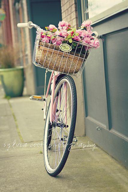 vintage pink bike: Pink Flowers, Pink Bike, Company Picnics, Bike Riding, Vintage Pink, Vintage Bicycles, Pink Rose, Flowers Baskets, Vintage Bike