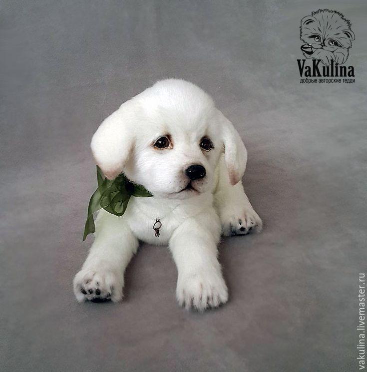 Handmade Labrador Teddy Puppy - white, teddy, labrador, dog, puppy, mini bears, cute