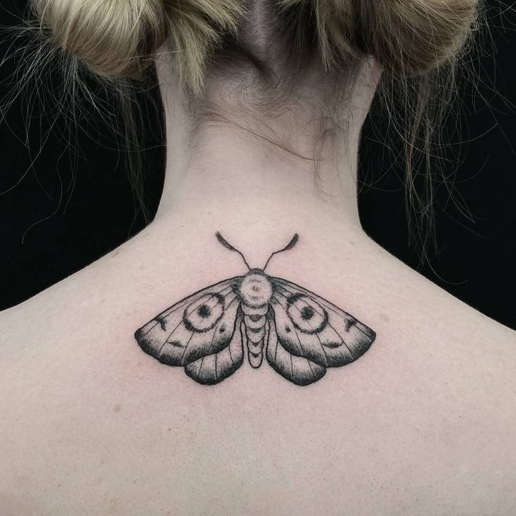 coolTop Animal Tattoo Designs - Small moth tat...
