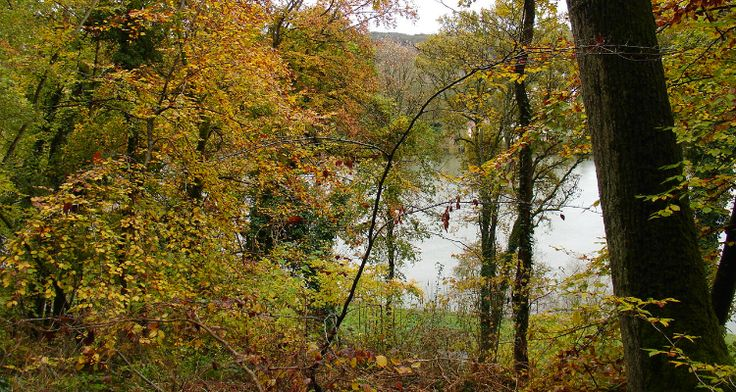 Rando : De Fontaine-le-Port à Champagne-sur-Seine
