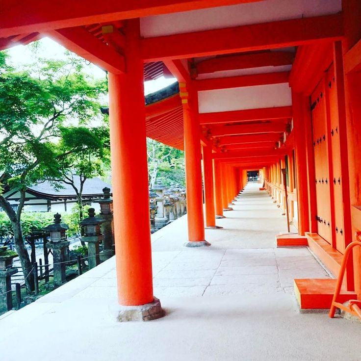 久しぶりに奈良へ来ました世界ふしぎ発見で春日大社をやっていたから予習はばっちりこの回廊に来たかったの #奈良 #日本 #nara #japan #japantrip #アトリエ由花 #国内旅行 #寺院 #春日大社
