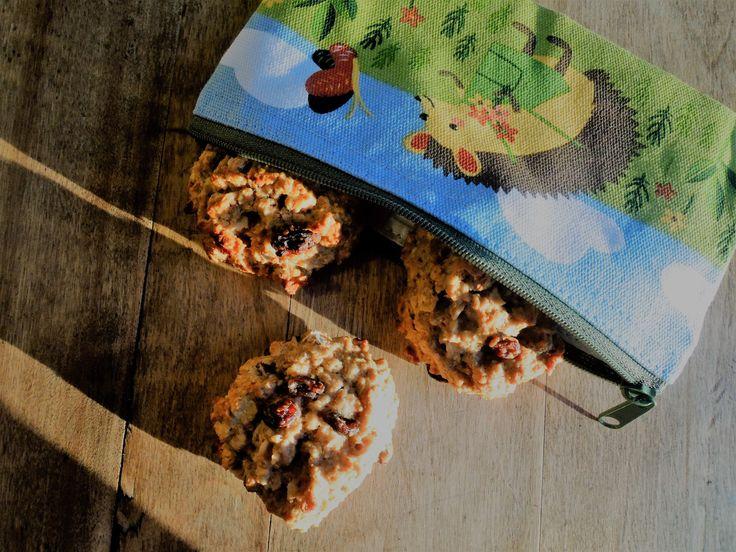 Galettes à l'avoine et aux raisins