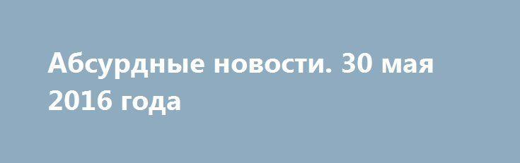 Абсурдные новости. 30 мая 2016 года http://rusdozor.ru/2016/05/31/absurdnye-novosti-30-maya-2016-goda/  Добрый вечер! День выдался довольно насыщенный, так что есть о чем написать и о чем поразмыслить. Понедельник, как говорят, удался! Начнем? Первое место. Алексей Кудрин – наше все. О таких людях на Руси всегда говорили – дай ему палец, так ...