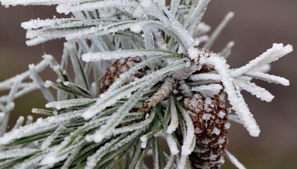 Как сделать искусственный снег своими руками в домашних условиях