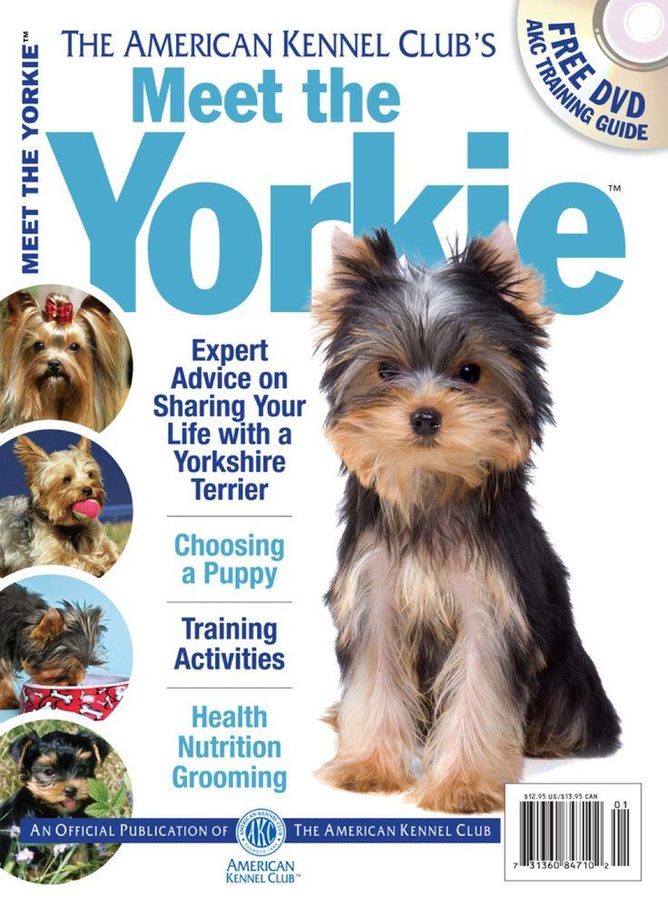 Meet the yorkie ebook yorkie yorkshire terrier dog