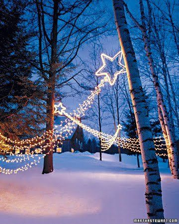 "outside xmas decoration | Love this image - it feels like is saying "" let the star lead the way ..."