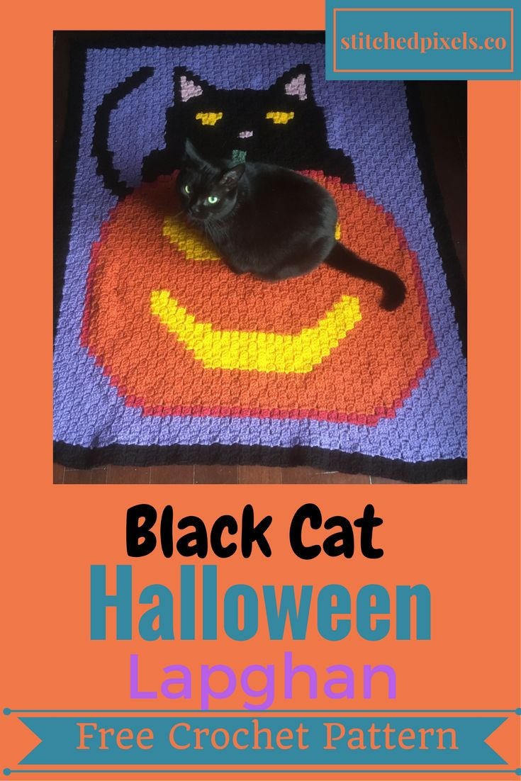 Black Cat Halloween Lapghan – Stitched Pixels