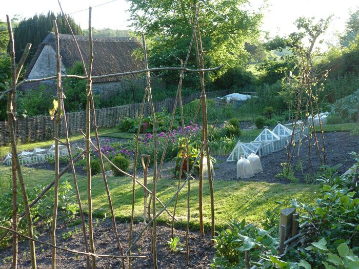 Love the natural pole climbing fence and little green for Country vegetable garden ideas