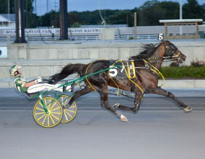 Foiled Again - richest pacer in history with more than $6 million looks to become the oldest horse at age nine to win a Breeders Crown in the Open Pace at Pocono Downs on Saturday, October 19th