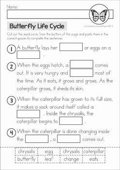 Butterfly Life Cycle cut and paste unit. A page from the unit: cut and paste the missing words
