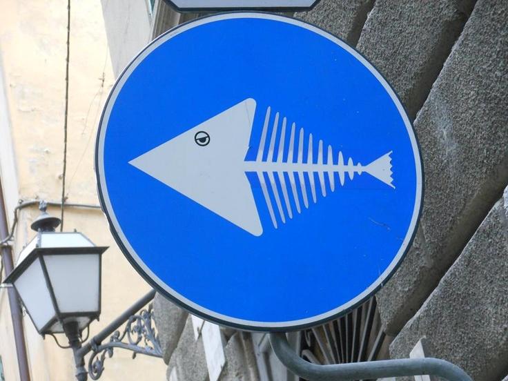 Clet Abraham street art blue circle fish signs
