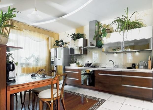 Plants On Top Of Kitchen Cabinets Greenery above kitchen cabinets ideas with decorative plants
