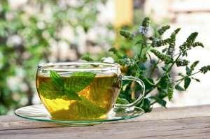 Maux de ventre, diarrhée, vomissements... Vous pouvez calmer les symptômes de la gastro-entérite en choisissant quelques bons traitements naturels.