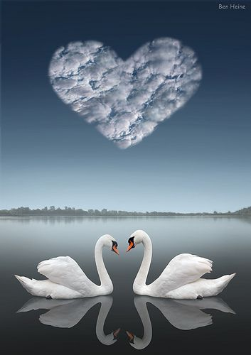 Together by Ben Heine, via Flickr {JosephRestored2meDaresay<3Meant2be<3}
