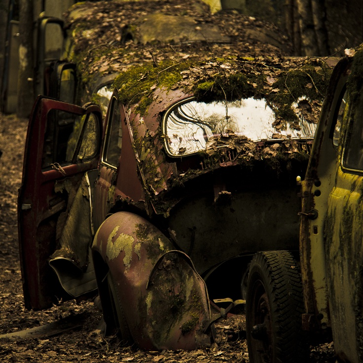 A day at the car cemetery