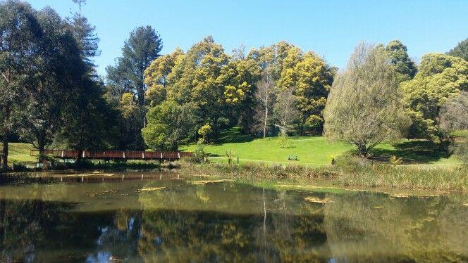 Emerald Lake Park in Emerald, VIC