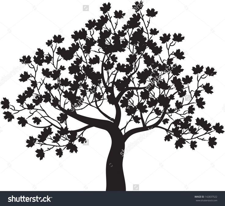 36 Best Trees Images On Pinterest