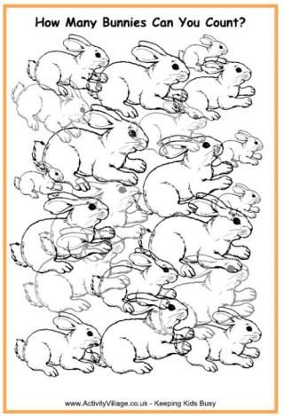 How Many Bunnies Can You Count?