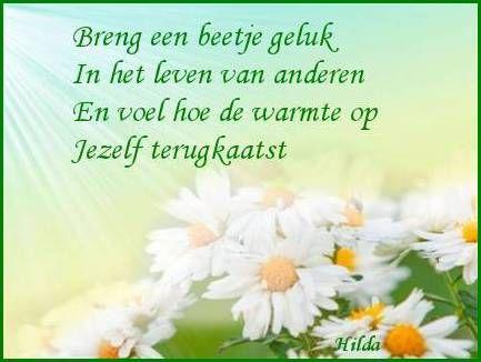 Belgische spreuken google zoeken spreuken en wijze teksten in het nederlands pinterest - Een mooie kamer van een mooie meid ...