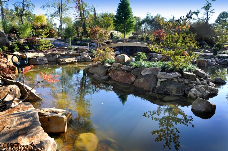 310 best images about pond on pinterest backyard for Kodama koi garden