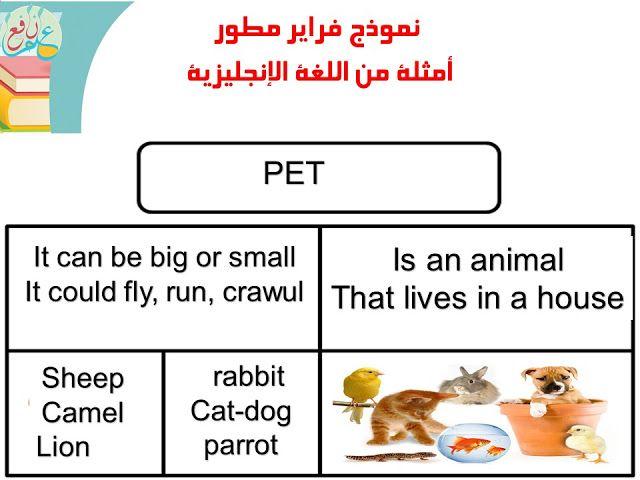 استراتيجية نموذج فراير ضمن استراتيجات التعلم النشط Frayer Model 3ilm Nafi3 Teachings Pets Life