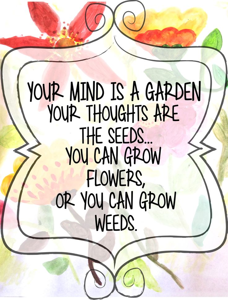 Your Mind is a Garden, Your Thoughts are the Seeds. You ...