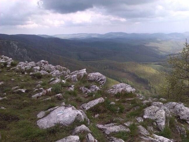 Bükk, Tar-kő