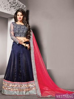 Navy Blue Net Heavy Embroidery Lehenga with Embroidered Choli
