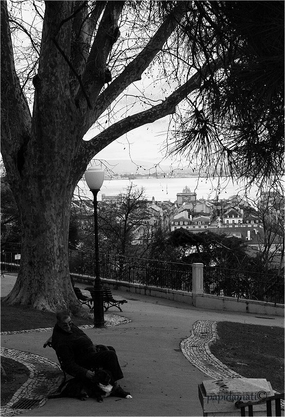JARDIM DO TOREL, Lisboa, Portugal. http://www.cm-lisboa.pt/equipamentos/equipamento/info/jardim-do-torel | Photo: papidamati©photography @ Pinterest. http://pinterest.com/pin/342906959097659143