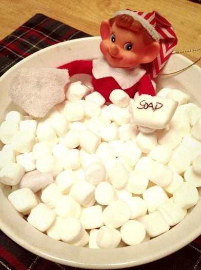 155 Elf on the Shelf Ideas