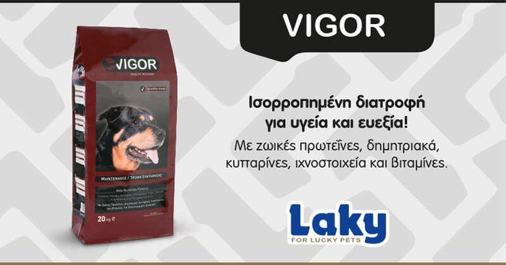 H τροφή Vigor αποτελεί μία πλήρη και ολοκληρωμένη διατροφή με θρεπτικά συστατικά κοτόπουλο, δημητριακά, ζωικά λίπη, βιταμίνες, μέταλλα και ιχνοστοιχεία στις σωστές αναλογίες, ώστε να καλύπτει με το…