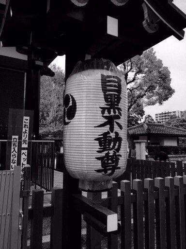 Ryusenji Temple/Meguro Fudo