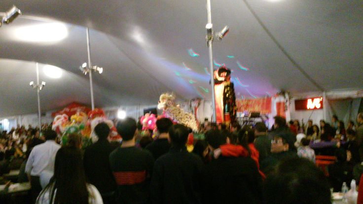 Lion Dance at the Tet Festival 2015 at Charlotte, NC. To see more pictures from the festival, go to: http://www.tetsandiego.com/vietnamese-american-blog/tet-in-charlotte-north-carolina-2015