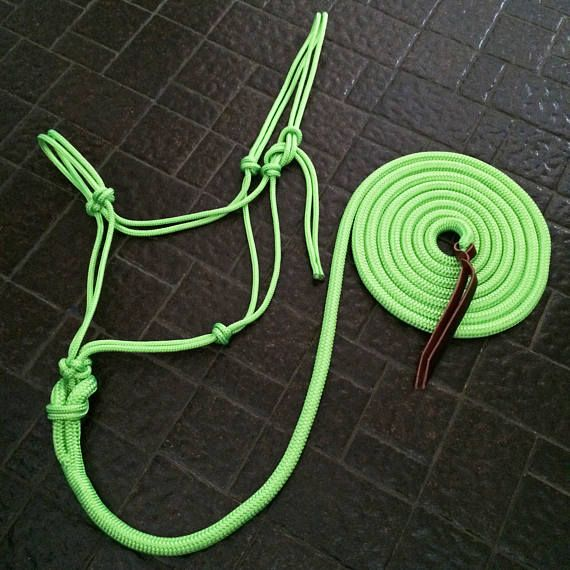 Custom rope halter & matching lead rope. 2 or 4 knot rope halter. Lead rope is 10 feet long with leather popper and plain loop end, made from double braid yacht rope.  Please specify 2 or 4 knot noseband, and if you would like a braided noseband, please write what color(s) you would like in notes to seller box! If you do not want a braided noseband you may leave the notes section blank.  Colors for braided nosebands can be viewed here, choose 1 or 2 colors - https://www.counterc...