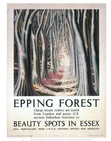 Epping Forest : Beauty Spots in Essex.
