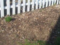 Types of Home Composting Methods and Systems: Lasagna Gardening, AKA Sheet…