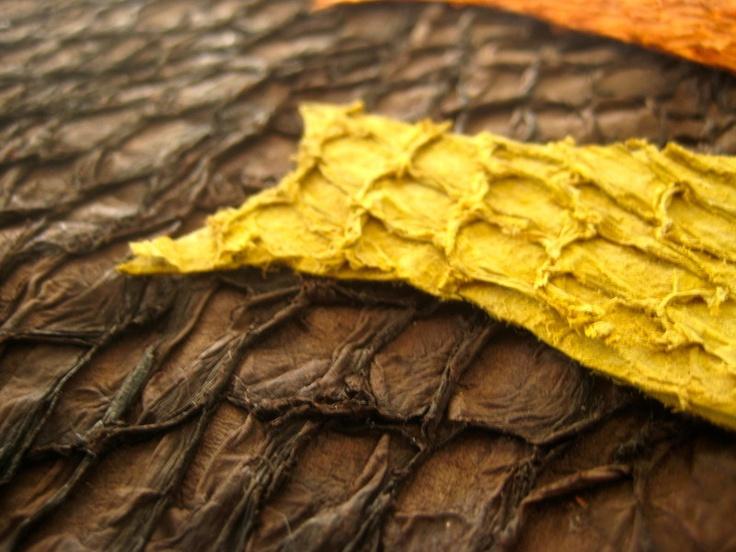 Couro de peixe pescada amarela