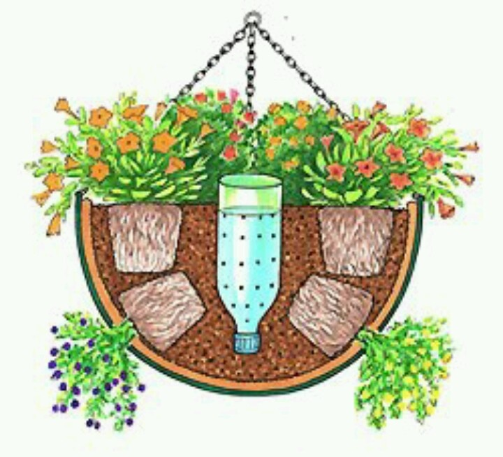 Waterer for plants. Cut bottom off plastic bottle, turn upside down and fill with water