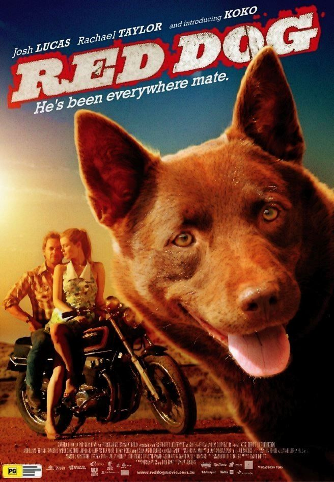 Movie Narrative Red Dog 2011 In 2020 Red Dog Dogs Dog Poster
