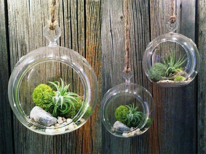 Cele Mai Bune 25+ De Idei Despre Selber Bauen Terrarium Numai Pe